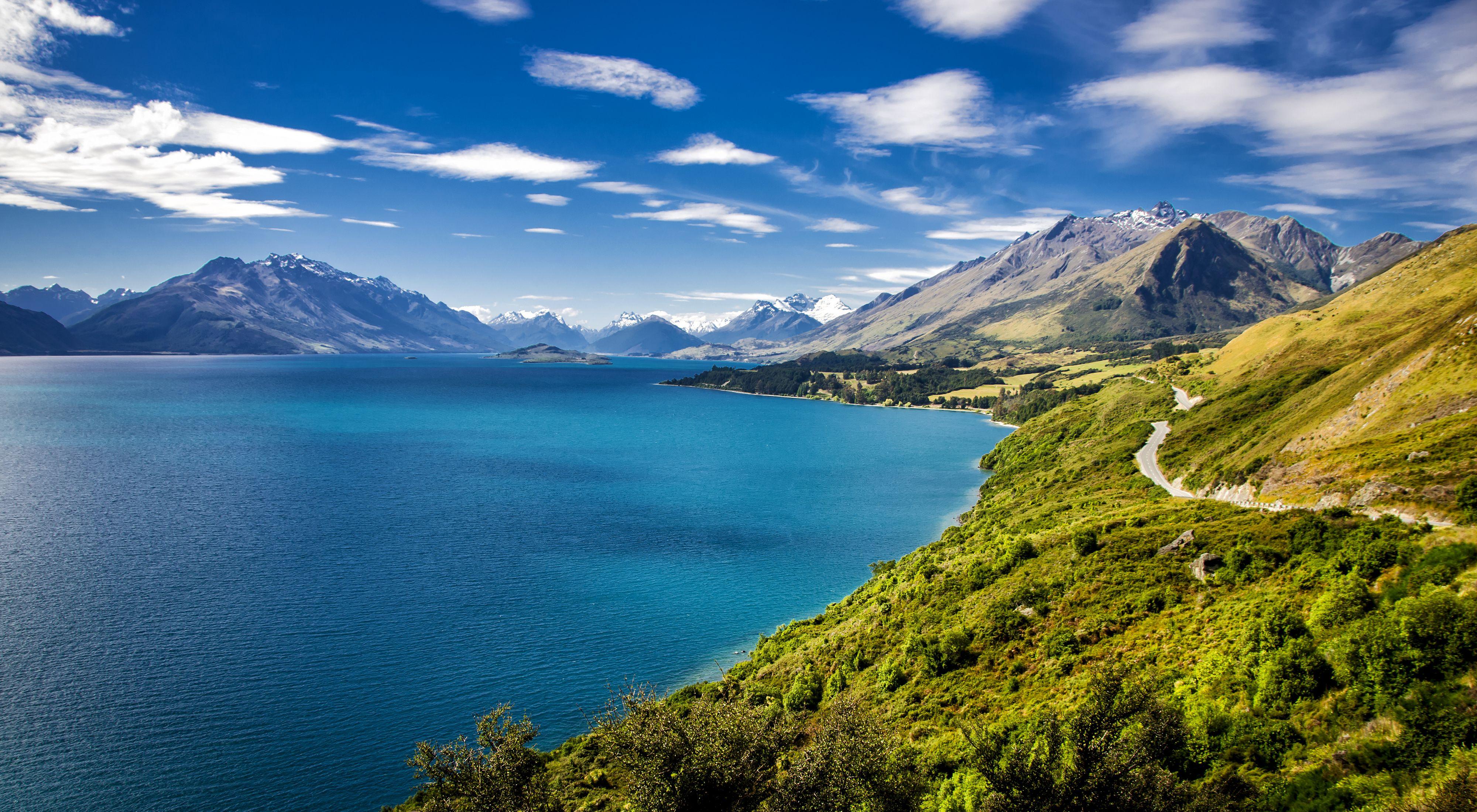 شرایط و قوانین فریت بار به نیوزلند